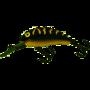 Salmo-Hornet-5cm-floating-black-tiger